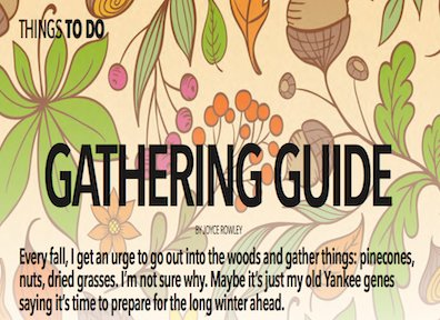gathering guide.png