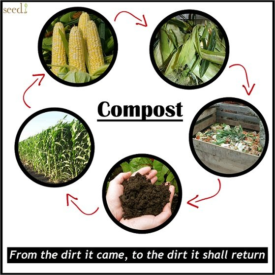 compost_cycle_poster.jpg