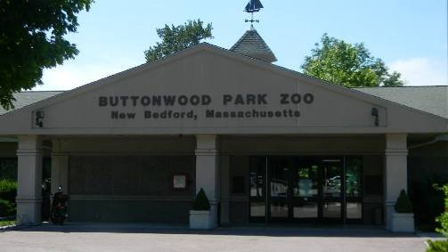 buttonwood-park-zoo-new-bedford.jpg